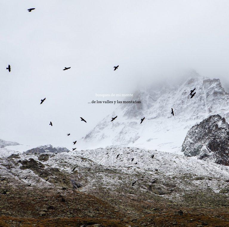 Bosques De Mi Mente – … De Los Valles y Las Montañas